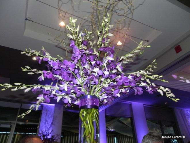 Il y avait des orchidées partout...partout où on regardait
