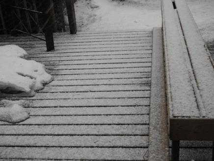 avril neige